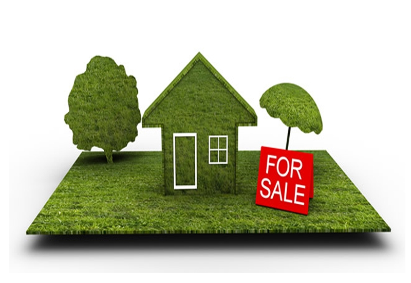12 ACRE LAND WITH HOUSE FOR SALE IN ADOOR