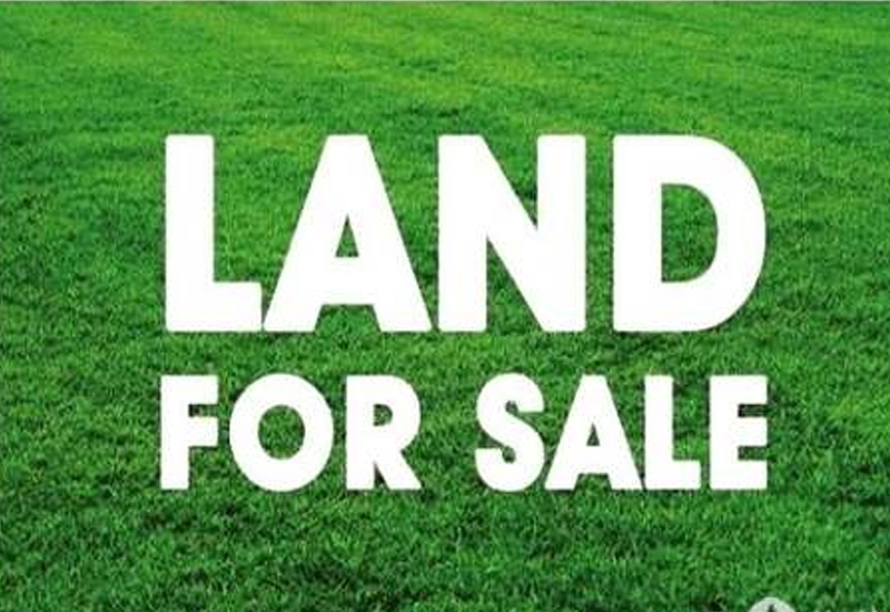 HOUSE PLOT FOR SALE IN PANDALAM